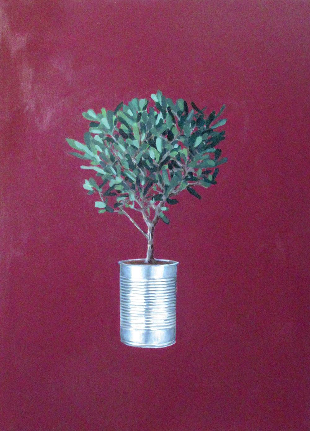 Cristina Mangini Bonsai di olivo e barattolo di latta Smalto su tela 50x70 cm